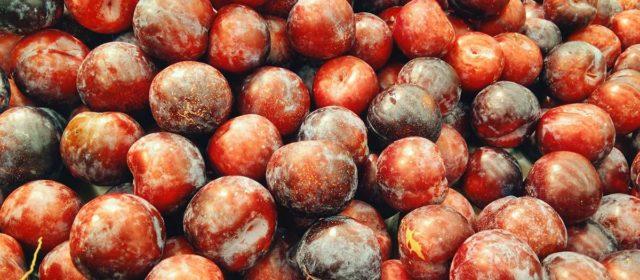First Fruits Organic Farms