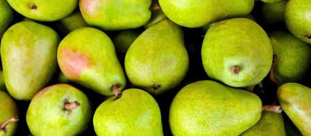 Rogers Mesa Fruit Co. Inc.