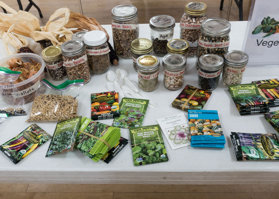 Seed Panel and Seed School in a Day