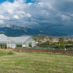 Local Organic Farmers Talk Clean Water