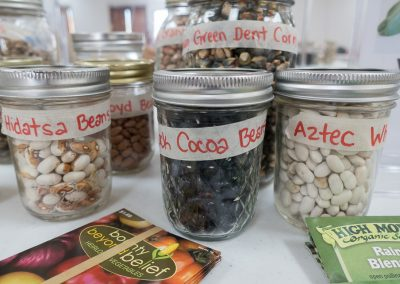 Beans at Swap Table