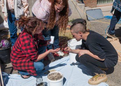 Seed School image of examining seeds