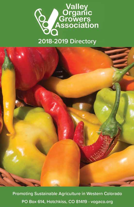VOGA 2018-2019 Directory cover image