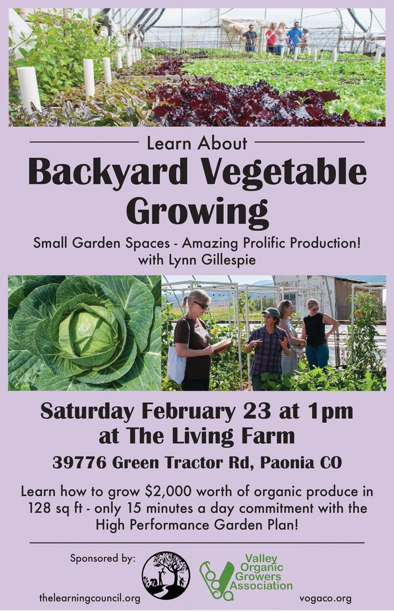 Backyard Vegetable Growing poster