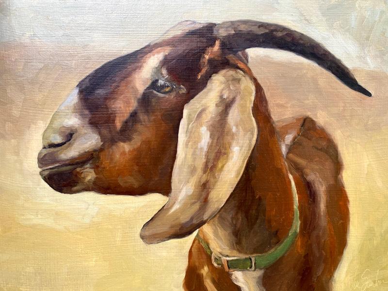 Shady Bird Studio goat image