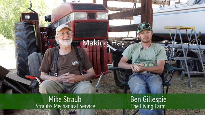 Making Hay image