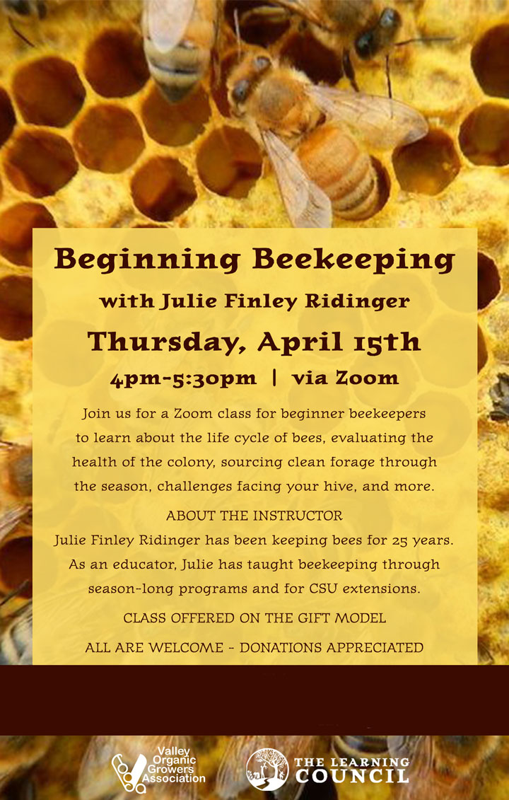 Beginning Beekeeping poster
